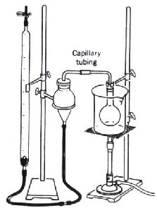 Gases And Absolute Zero